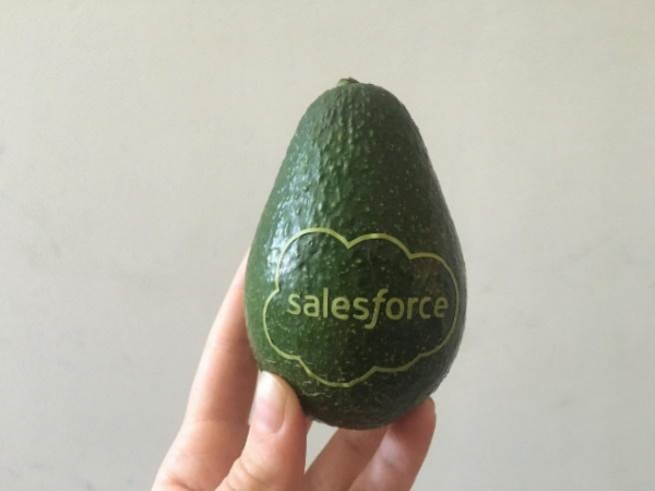 An avocado with the Salesforce logo on it.